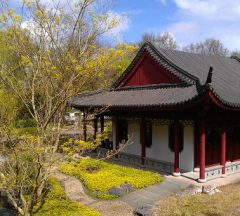 Chinese tuin april 2016