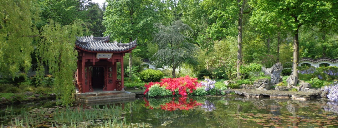 header-chinese-tuin
